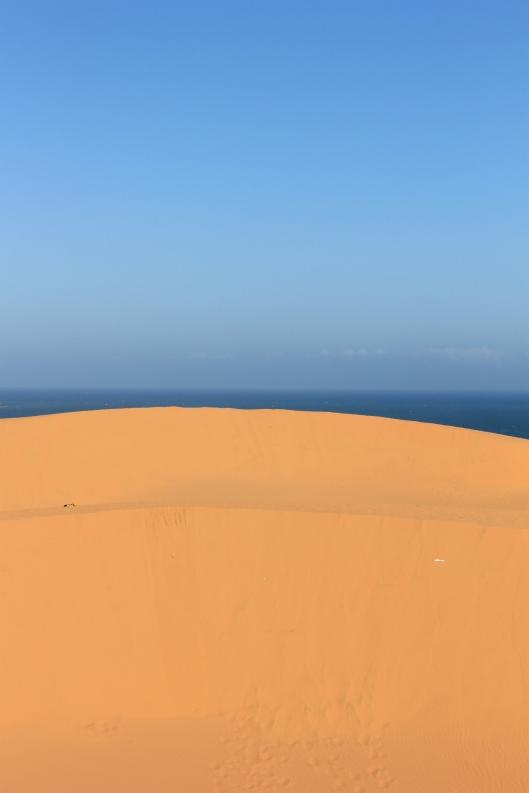 Complete landscape